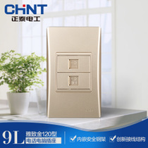 CHiNT electrician 120 type NEW9L safety steel frame wall switch socket Golden telephone computer socket