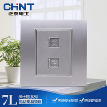 CHiNT electrical steel frame wall switch socket panel NEW7L gentleman Silver telephone computer socket panel