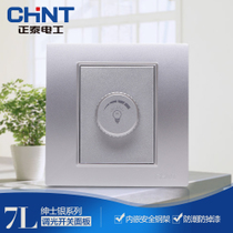 CHiNT electrical steel frame wall switch socket panel NEW7L gentleman Silver dimmer switch