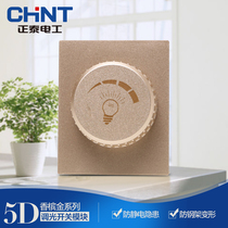 CHiNT electrician 118 Type Assembly wall socket NEW5D steel frame champagne dazzle gold dimmer switch module