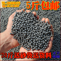 Iron Sand palm hard qigong special iron sand iron Sand 5 Jin Smooth rust-free quality steel sand round solid iron sand