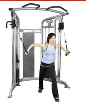 American demax HG8703 Bevel large Eagle Gym strength training device