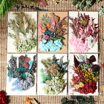 Dried flowers eternal flower DIY embossing material package hand Yahua photo frame notebook phone shell epoxy wax stickers