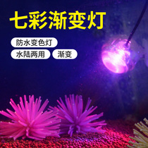 Fish tank led light waterproof colorful discoloration aquarium decoration diving lights small spotlights water Night Light lighting