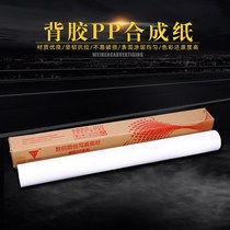 Indoor PP adhesive synthetic paper photo paper inkjet advertising photo material poster sticker