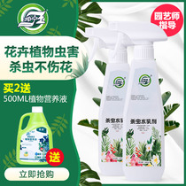Pesticides flower plants flowers common red spider scale insect special aphids insecticide meat household insecticide