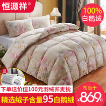 Hengyuanxiang duvet 95 goose down quilt double children thickening five-star hotel white goose down quilt