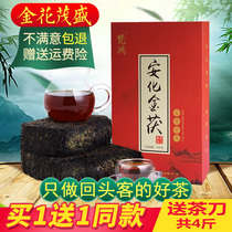 Black tea Hunan Anhua Anhua Black Tea Jinxuan Authentic Golden Flower Sky Tip Brick Van Hong Anhua Authentic Black Tea Brick Leaves