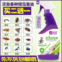 Insecticide domestique Lit hundred deworming spirit de mites off tide poux poux fourmis cafards medicine spray