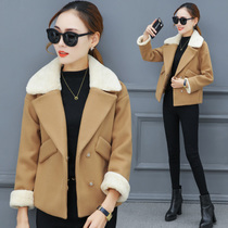 Woolen jacket womens autumn and winter 2019 new long-sleeved lambskin short winter short paragraph woolen coat tide