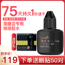 Japan genuine Black Gold grafting Eyelash Glue eyelashes division dedicated super stick quick-drying long-lasting 75 days allergy