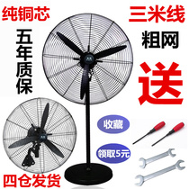 Industrial electric fan High-Power powerful landing fan shaking head wall fan mechanical commercial Super wind Horn fan