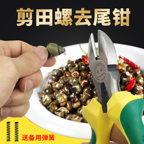 Shear screw scissors clip snail tail tool screw pliers winded snail tail artifact stone snail snail snail to the end of the pliers