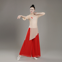 Teachers ballet training dance clothing yoga form Chinese style classical dance clothing female modern dance elegant professional