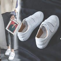 2019 autumn new net red Velcro white shoes female spring students wild white shoes Korean casual shoes