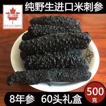 Light dry turkey rice sea cucumber small sea cucumber dry Iceland imported Wild 500g special 60 head in bulk