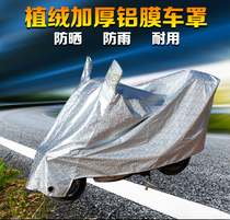Pedal electric car car cover motorcycle car clothes battery car rain sunscreen sun shade cloth cover four seasons universal