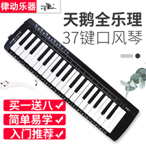 Swan whole music 37 key mouth organ beginner primary school students playing adult professional advanced mouth-playing teaching