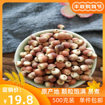 Farmer's own red leather solid dry goods bulk new goods cooked special grade fresh solid non-wild chicken head rice 500g