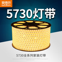 Edrand LED lamp with highlight living room aisle ceiling decorative lighting patch waterproof version soft light strip