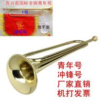 All copper senior youth musical instrument assault no.