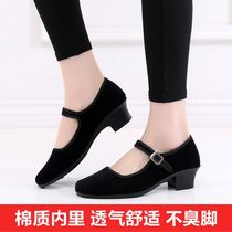 Modern dance shoes dance wear black shoes soft bottom yangge National Dance mother-in-law square dance fitness Gymnastics