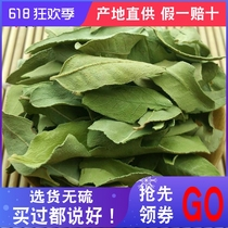 Xinjiang large leaf apocynum apocynum tea new 500 grams of raw non-leaf