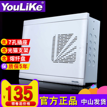 Yuriko weak box home empty box multimedia fiber optic cable box Network Information box dissimulé 400300 large