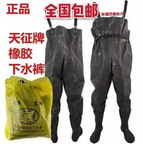 Genuine tianzheng red card rubber under the pants fishing pants fishing waterproof farming car wash pants half thickening