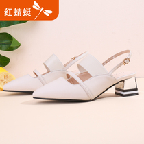 Red Dragonfly shoes 2019 summer New Baotou shoes rough with pointed womens shoes after the empty comfortable casual shoes