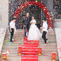 Wedding supplies wedding salute electronic fireworks celebration opening Color Spray flower tube concierge outdoor fireworks Gun super loud