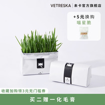 Not Card lazy cat grass seed pot without soil hydroponic planting set wheat grass seed catnip snacks