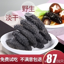 Three Dolphins wild dry sea cucumber dry shot ten 500g special sea cucumber small sea infiltration