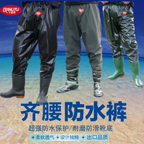 Trinidad rain waist water pants half-length waterproof fish pants wading fishing pants catch fishing pants thickened soles