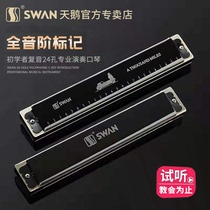 Swan harmonica 24-hole Polyphony C-tone beginners entry students advanced adult 28-hole accented professional playing level