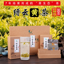 Zhejiang Jinyun yellow tea 2019 New tea Ming Qian tea premium Huang Ya Lishui Gold Tea high-end gift box tea 100g