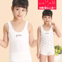 Girls  developmental vest 9-12-year-old childrens underwear little girls bottom female child just developed 15 pure cotton