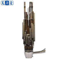 Tianyin 26 reeds hugging 26 reeds plus key-amplifying and bass