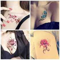A set of 30 Bana tattoo stickers waterproof female rose lasting concealer Korea temptation simulation sexy