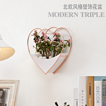 Teen Heart metal wall pendant Nordic iron wall plant decorations modern mesh red stereo wall decoration flowerpot