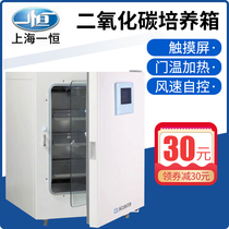 Shanghai I Heng CARBON dioxide incubator BPN-40RHP touch screen microbial CO2 culture box cell culture