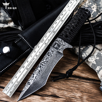 Retired knife portable outdoor knife tritium gas knife self-defense straight knife field survival knife blade sharp knife