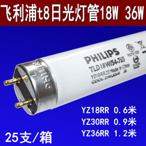 Philips T8 fluorescent tube grille lamp vintage straight tube fluorescent lamp TLD 18W30W36W 54-765