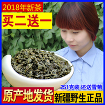 Send snow chrysanthemum authentic origin authentic apocynum tea wild Xinjiang flower apocynum health tea buds