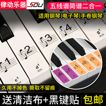 Piano keyboard sticker 88 key 61 electronic piano hand roll key staff notation key notes phonetic digital stickers