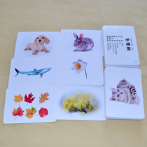 Eight languages encyclopedia card hot animal plant literacy early education Duman seven Tian Shinshu