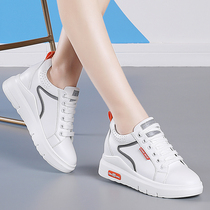 Within the increase in small white shoes female 2019 autumn explosion models thick bottom slope with thin leather wild sports and leisure travel shoes female