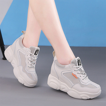 Increased white shoes women 2019 autumn section net shoes breathable mesh leather was thin sports casual bear old shoes