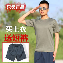 Genuine 07 fitness training suits men's summer outdoor round neck Army fans T-shirt quick-drying running short-sleeved military training suits