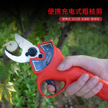 Pioneering electric pruning shears fruit scissors rechargeable pruning shears portable Garden Point electric shears 110001